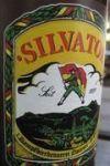 Silvator